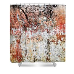 Shower Curtain featuring the photograph Wall Abstract  183 by Maria Huntley