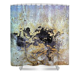 Wall Abstract 68 Shower Curtain