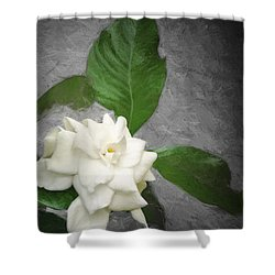 Shower Curtain featuring the photograph Wall Flower by Carolyn Marshall