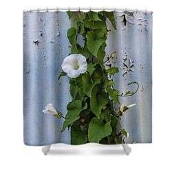 Wall Flower Shower Curtain