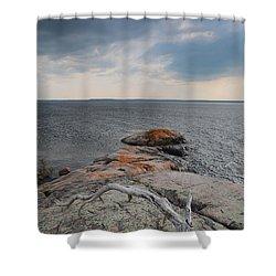 Wall Island Lichen Driftwood 3640 Shower Curtain