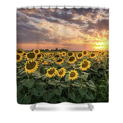 Wall Of Sunflowers Shower Curtain