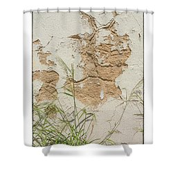 Wall Shower Curtain by R Thomas Berner