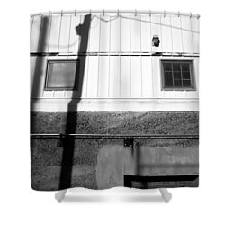 Wall Widows  Shadow 2 Shower Curtain