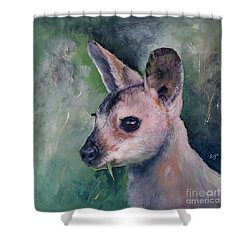 Wallaby Grazing Shower Curtain