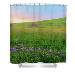 Wally Baskets At Sunrise Shower Curtain by Marc Crumpler