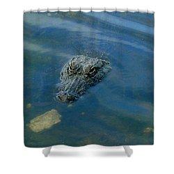 Wally The Gator Shower Curtain