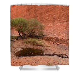 Shower Curtain featuring the photograph Walpa Gorge 01 by Werner Padarin