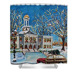 Waltham Common Shimmering Shower Curtain