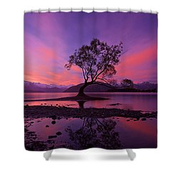 Wanaka Tree Shower Curtain