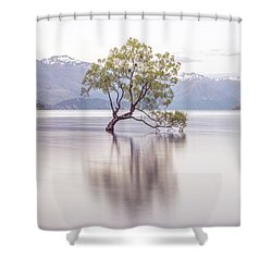 Wanaka Tree Shower Curtain by Racheal Christian