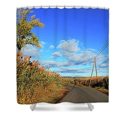 Wanderer's Way Shower Curtain