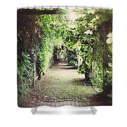 Shower Curtain featuring the photograph Wandering by Karen Stahlros