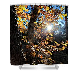 Waning Autumn Shower Curtain