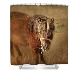 Shower Curtain featuring the photograph Wanna Be Friends? by Wallaroo Images
