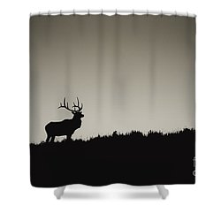 Wapiti Ridge Shower Curtain