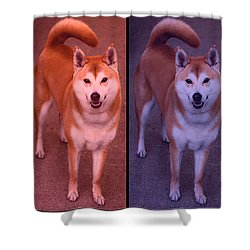 Warhol Yumi Shower Curtain