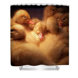 Warm And Fuzzy Shower Curtain by Robert Orinski