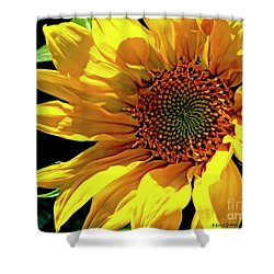 Warm Welcoming Sunflower Shower Curtain