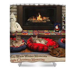 Warm Winter Moments Shower Curtain by Gary Hall