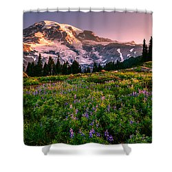 Shower Curtain featuring the photograph Warming Up In Paradise by Dan Mihai