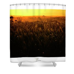 Warmth Of A Yellow Sun Shower Curtain