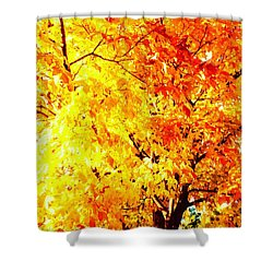 Warmth Of Fall Shower Curtain