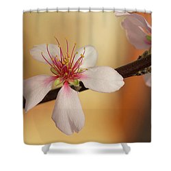 Warmth Of Hope. Shower Curtain
