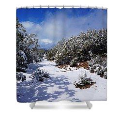 Warner Springs Snow Shower Curtain