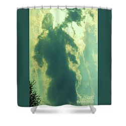 Warrior Hunter Shower Curtain