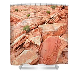 Shower Curtain featuring the photograph Wash 4 Color In Valley Of Fire by Ray Mathis