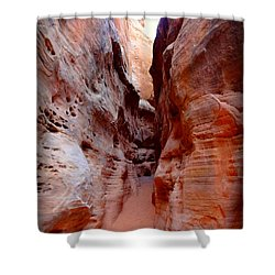 Wash Walk Shower Curtain