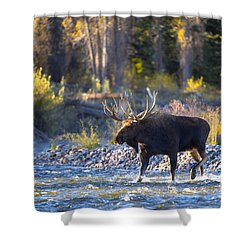 Shower Curtain featuring the photograph Washakie by Aaron Whittemore