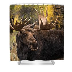 Washakie In The Autumn Beauty Shower Curtain