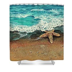 Shower Curtain featuring the painting Washed A Shore by Darice Machel McGuire