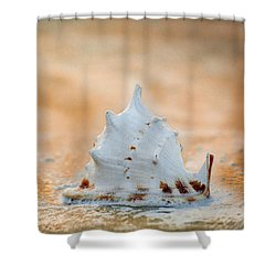 Shower Curtain featuring the photograph Washed Up by Sebastian Musial