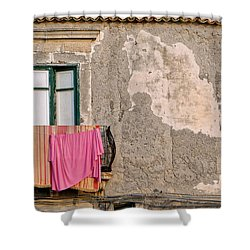 Washing Shower Curtain by Robert Charity