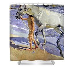 Washing The Horse Shower Curtain by Joaquin Sorolla y Bastida