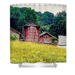 Washington County Vignette Shower Curtain