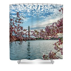 Washington Monument Through Cherry Blossoms Shower Curtain