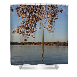 Washington Monument With Cherry Blossoms Shower Curtain