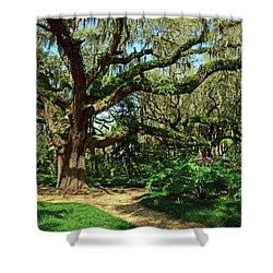 Washington Oaks Gardens Shower Curtain