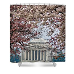 Shower Curtain featuring the photograph Washington Spring by Mitch Cat