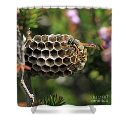Wasp Shower Curtain by Stephan Grixti
