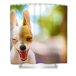Shower Curtain featuring the photograph Wassup? by TC Morgan