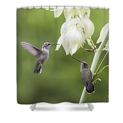 Watch And Learn Shower Curtain