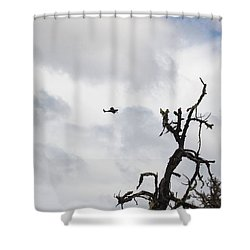 Shower Curtain featuring the photograph Watch Out For That Tree by Marie Neder