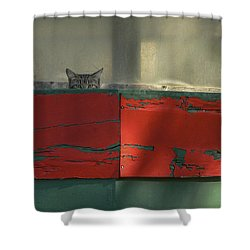 Watchful Cat Shower Curtain