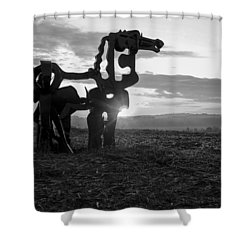 Watchful The Iron Horse  Shower Curtain by Reid Callaway