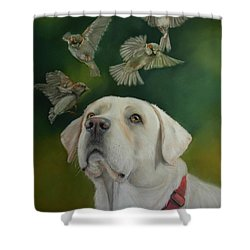 Watching Birds Shower Curtain